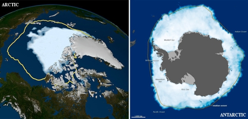 Antarctic sea ice - compared Arctic