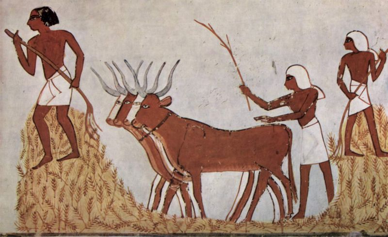 Mediterranean droughts throughout climate history - ancient Egypt