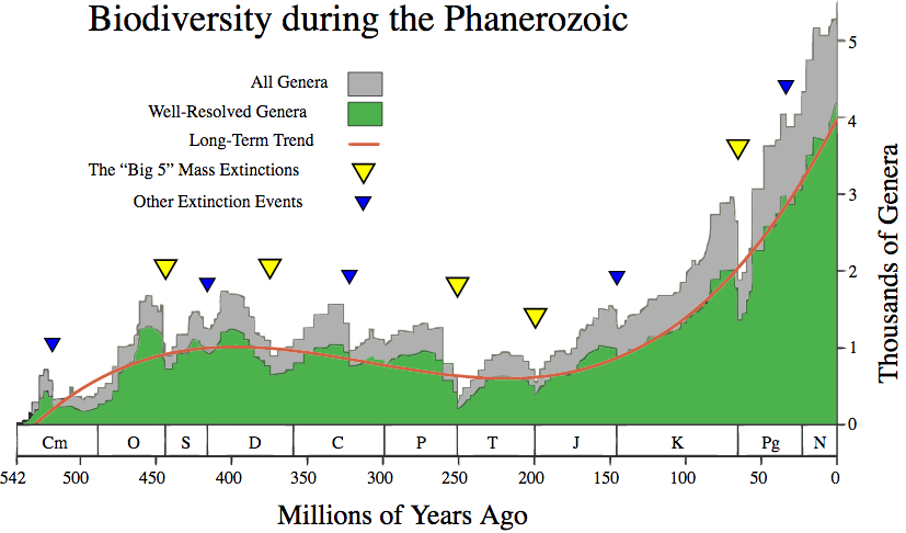 The evolution of biodiversity on Earth