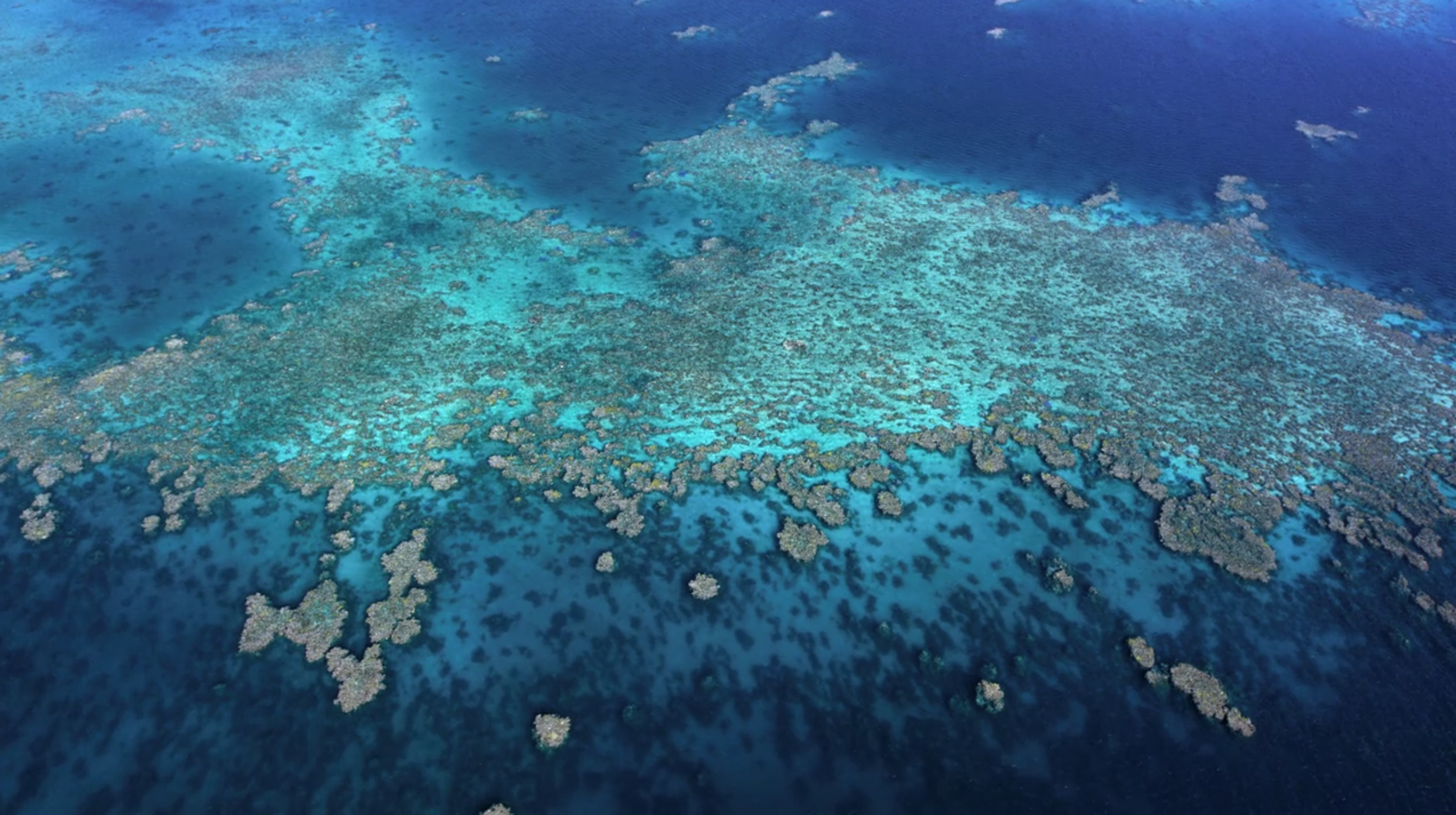 Coral reef ecosystem from the air