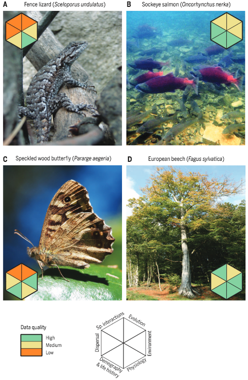 Improving climate-biodiversity models species predictions