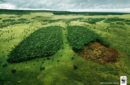 Amazon rainforest - artist impression of deforestation, WWF ad
