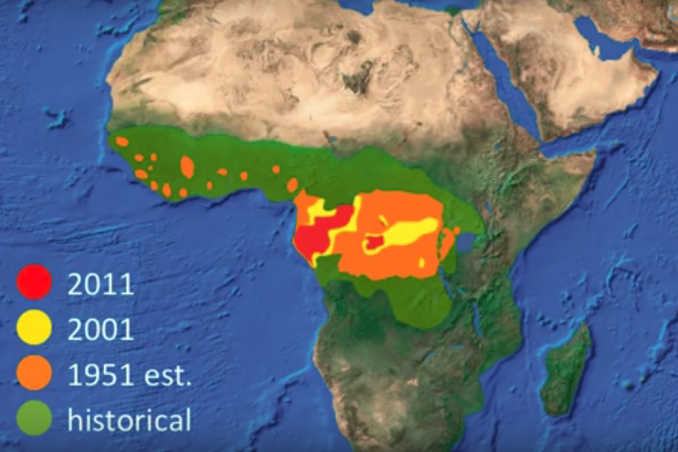 Congo Basin On Map Of Africa.Climate Change Anthropocene Extinction 27 Africa Is Warming Fast