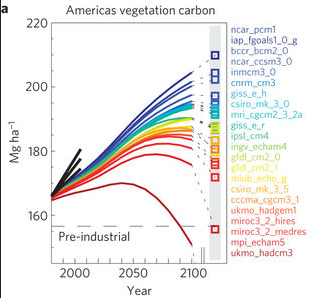 Amazon rainforest, 22 climate models, 1 vegetation model
