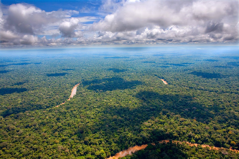 Amazon rainforest climate tipping point
