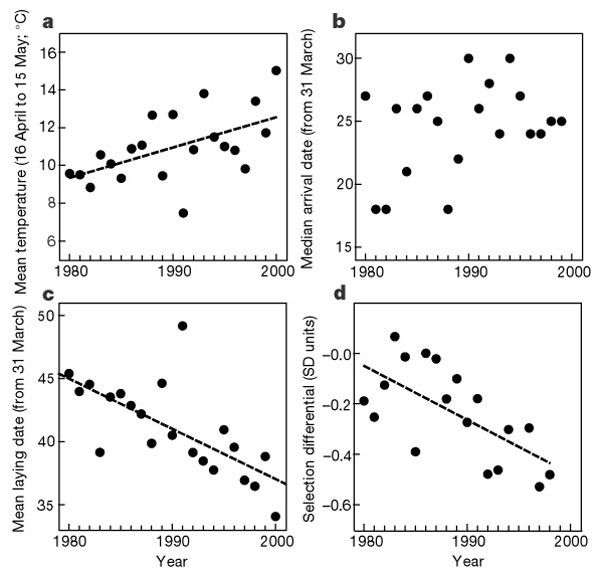 Spring temperature, breeding and spring arrival date of a pied flycatcher population in the Netherlands from 1980 to 2000.