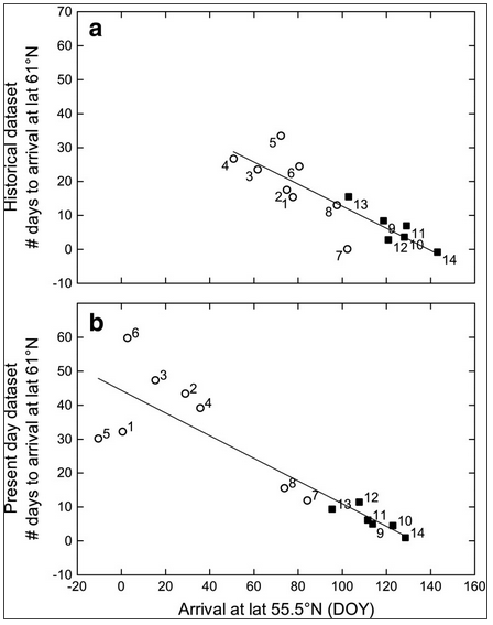 Migratory birds trend Scandinavia - climate change