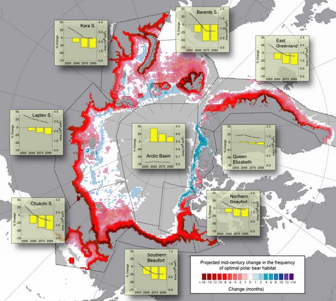 Habitat decline polar bears climate change