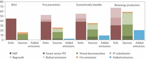 Carbon sinks, sources and added emissions