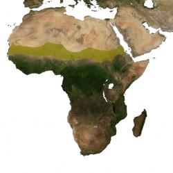 Sahel Africa