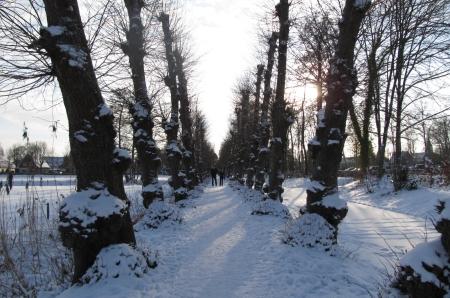 Dutch White Christmas 2010 snow