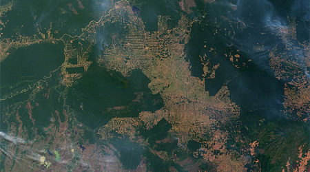 Rising food demand Amazon deforestation