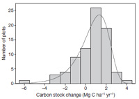Forest CO2 fertilisation effect