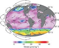 Iron fertilisation in Pleistocene