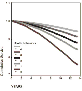 longevity ageing graph