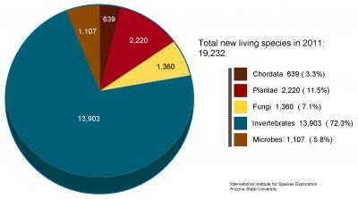 species discovery pie chart - biodiversity